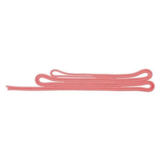طنابچه پروسیک سالیوا