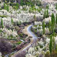 طبیعت گردی روستای بوژان